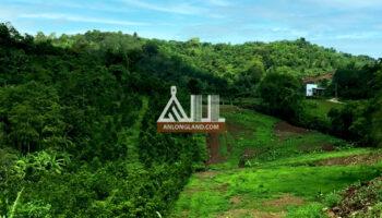 8 lô đất siêu đẹp Phú Mỹ – Xuân Lập – TP Long Khánh giá CHỈ TỪ 680tr/500m2!!!!